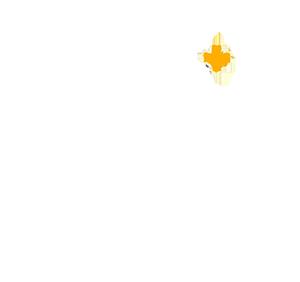 MASA finalist 2017